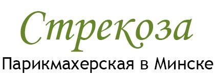 strekoza-minsk.by
